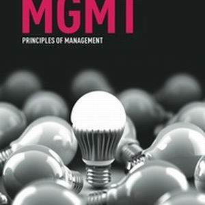 Test Bank for MGMT : principles of management