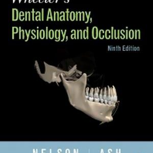 Test Bank for Wheeler's Dental Anatomy
