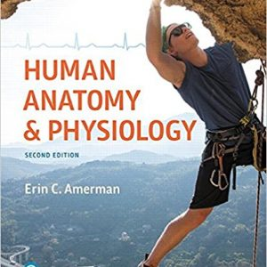 Test Bank for Human Anatomy and Physiology