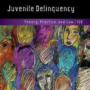 Solution manual for Juvenile Delinquency: Theory