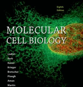 Solution Manual for Molecular Cell Biology
