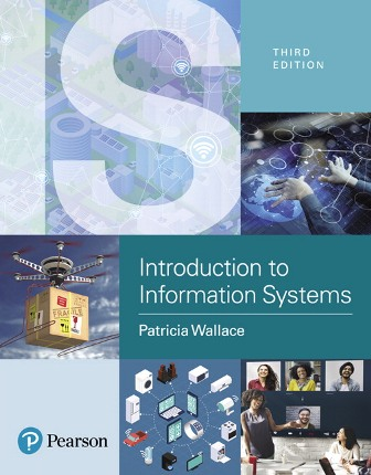 Test Bank for Introduction to Information Systems: People