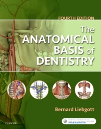 Test Bank for The Anatomical Basis of Dentistry 4th Edition Liebgott ISBN: 9780323477307 ISBN: 9780323477284
