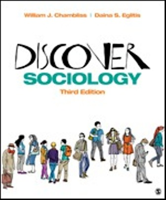 Test Bank for Discover Sociology 3rd Edition Chambliss
