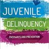 Test Bank for Juvenile Delinquency: Pathways and Prevention 1st Edition Mallett