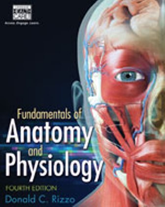 Solution Manual for Fundamentals of Anatomy and Physiology, 4th Edition Rizzo