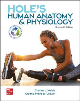 Test Bank for Hole's Human Anatomy and Physiology, 16th Edition Welsh